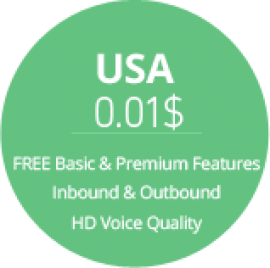 voip calling to usa